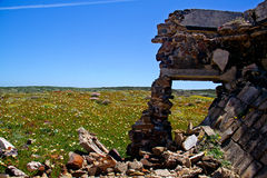 Ruin in meadow Royalty Free Stock Photography