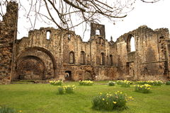 Ruin of medieval abbey Royalty Free Stock Photo