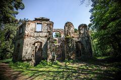 Ruin in the middle of forest Stock Photo