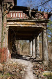 Ruin in nature Royalty Free Stock Photos