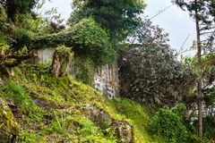 Ruin of an old house at Sao Bras on Sao Miguel island. Archipelago of the Azores in the Atlantic Ocean belonging to Portugal Royalty Free Stock Photos