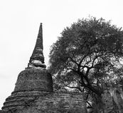 Ruin pagoda Royalty Free Stock Photos