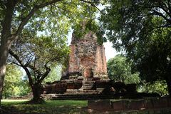 The ruin pagoda of Prang Srithep and foreground green tree in archaeological site of Srithep ancient town in Petchaboon, Thailand. The influence of ancient Stock Images