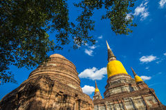 Asian religious architecture. Ancient Buddhist pagoda ruins in Ayutthaya in Thailand Royalty Free Stock Images