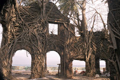 Ruin and the Roots. Ruin of abandoned building covered with roots in Ross Island, Port Blair, Andaman, India, Asia Royalty Free Stock Photos