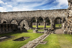Ruin of St Andrews Cathedral Stock Image