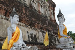 The ruin temple in ayutthaya Royalty Free Stock Photo