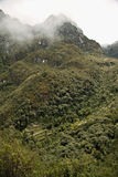 A ruin in the way to reach Machu Picchu Lost City Royalty Free Stock Photo