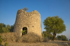 The ruin of a windmill. Inside has increased one fig and on top of it an olive Stock Image