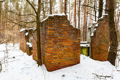 Ruin in winter forest Royalty Free Stock Image