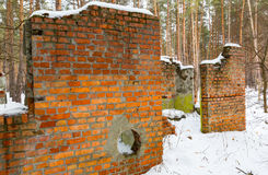 Ruin in winter pine forest Royalty Free Stock Images