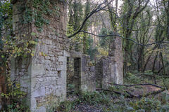 Ruin in the woods stock image