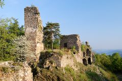 Ruin of zubstein castle - evening shine Royalty Free Stock Images