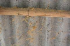 Ruina de bambú Fotografía de archivo libre de regalías