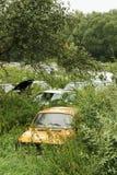 Ruina de coches viejos Imagen de archivo