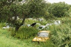 Ruina de coches viejos Foto de archivo
