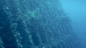 Ruina de la nave en el fondo del mar metrajes