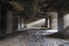 Ruina de la planta Imágenes de archivo libres de regalías