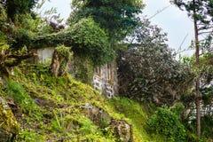 Ruina de una casa vieja en los sujetadores del sao en la isla de Miguel del sao Fotos de archivo libres de regalías