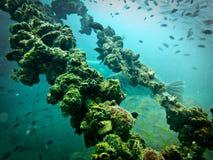Ruina del azúcar, nave subacuática Foto de archivo libre de regalías