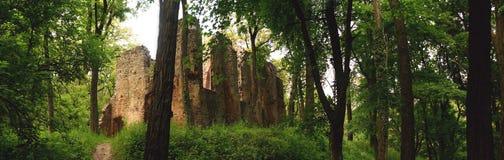 Ruina del monasterio en el bosque imágenes de archivo libres de regalías