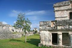 Ruina maya Imágenes de archivo libres de regalías