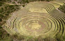 Ruinas agrícolas Incan, Perú Foto de archivo libre de regalías
