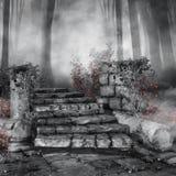 Ruinas con las rosas rojas Imagen de archivo