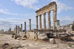 Ruinas de Apamea Foto de archivo libre de regalías
