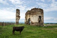 Ruinas de Bociulest fotos de archivo