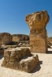Ruinas de Cartago Fotografía de archivo libre de regalías