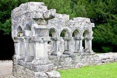 Ruinas de Cong Abbey, al oeste de Irlanda Imágenes de archivo libres de regalías