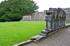 Ruinas de Cong Abbey, al oeste de Irlanda Foto de archivo libre de regalías