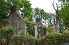 Ruinas de Irlanda Fotografía de archivo
