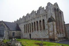 Ruinas de la abadía, Ardfert, Irlanda Foto de archivo libre de regalías