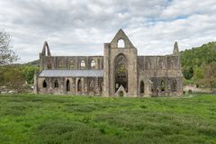 Ruinas de la abadía cisterciense de Tintern, País de Gales Foto de archivo libre de regalías