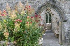 Ruinas de la abadía de Muckross Imagen de archivo libre de regalías