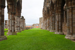 Ruinas de la abadía de Whitby Fotos de archivo libres de regalías