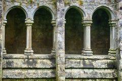 Ruinas de la abadía, Quin, Irlanda Fotos de archivo libres de regalías