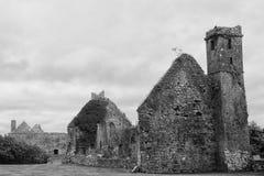Ruinas de la abadía, Quin, Irlanda Fotografía de archivo