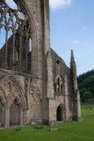 Ruinas de la catedral de la abadía de Tintern Fotos de archivo libres de regalías