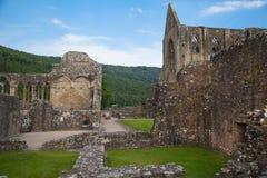 Ruinas de la catedral de la abadía de Tintern Fotografía de archivo libre de regalías