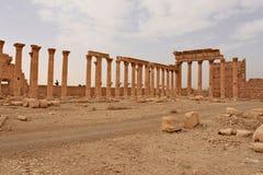 Ruinas de la ciudad antigua del Palmyra en desierto sirio poco antes la guerra, 2011 Foto de archivo libre de regalías