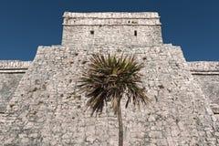 Ruinas de la ciudad maya tulum, Quintana Roo, M?xico imagen de archivo