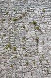 Ruinas de la ciudad de Tulum Fotografía de archivo libre de regalías