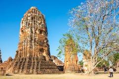 Ruinas de la ciudad vieja de Ayutthaya, Tailandia Imagen de archivo libre de regalías