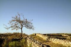 Ruinas de la fortaleza de Histria imagenes de archivo