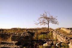 Ruinas de la fortaleza de Histria foto de archivo