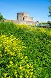 Ruinas de la fortaleza de Koporye Fotos de archivo libres de regalías