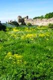 Ruinas de la fortaleza de Koporye Foto de archivo libre de regalías